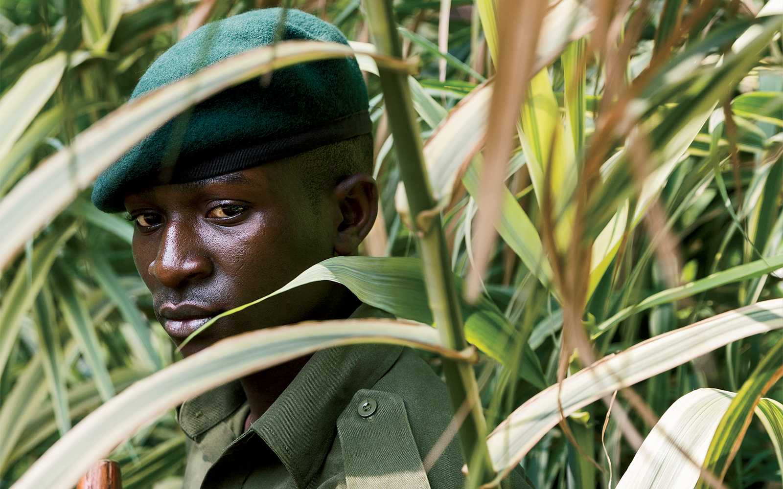A ranger on patrol in Virunga National Park