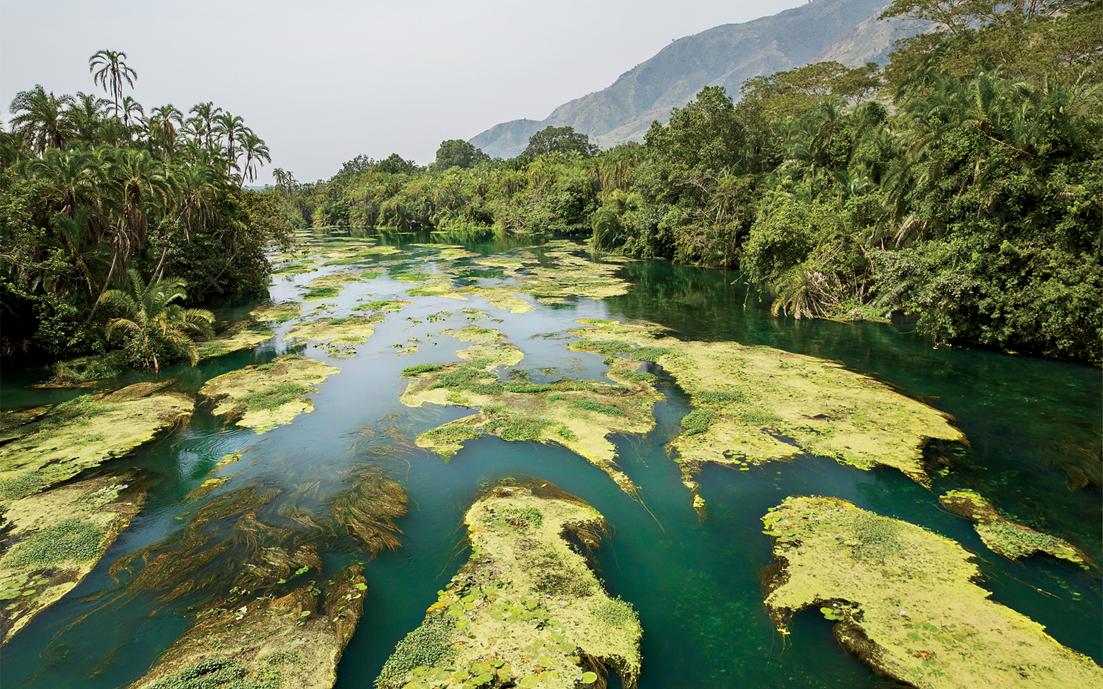 One of a series of pristine water holes in Virunga National Park, as seen from a helicopter safari