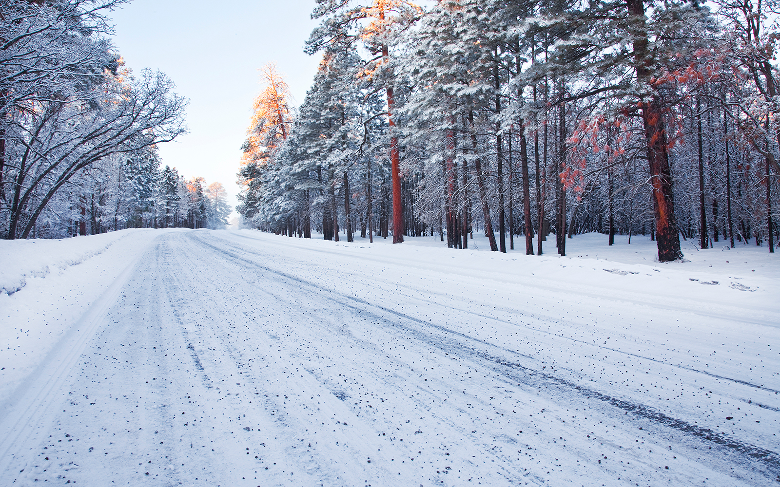 USA, Arizona, Empty road in winter