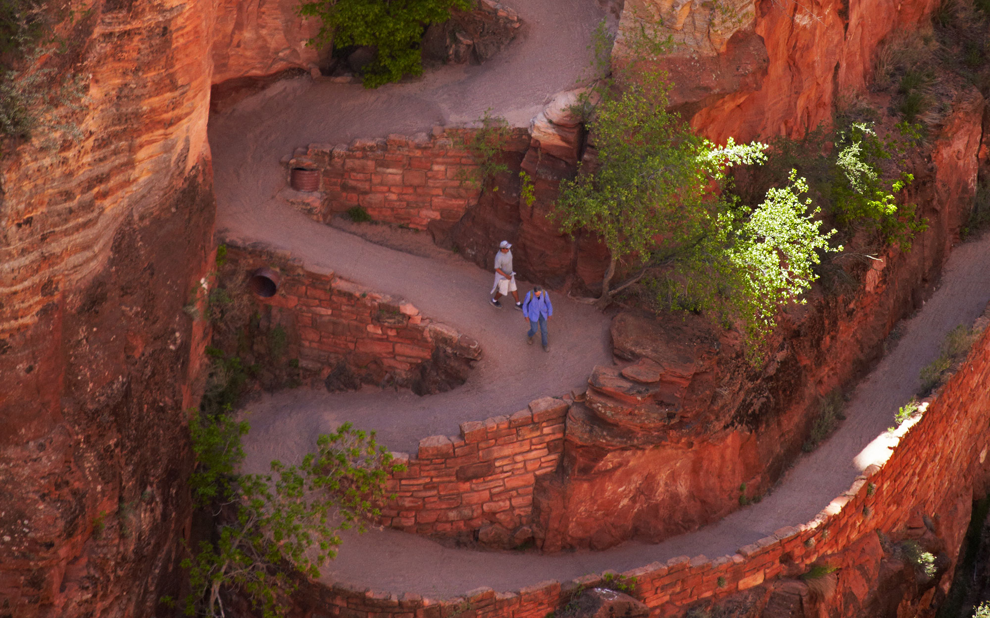 Hikers on Walters Wiggles zigzag, on West Rim Trail and Angels Landing track Zion National Park, Utah, USA