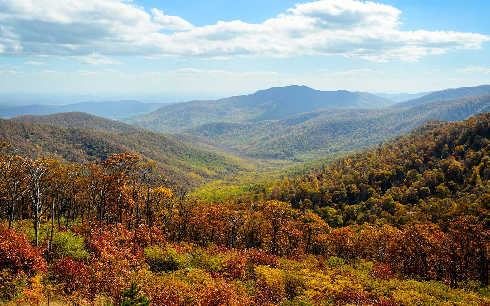 Best Activities and Campgrounds in Shenandoah National Park