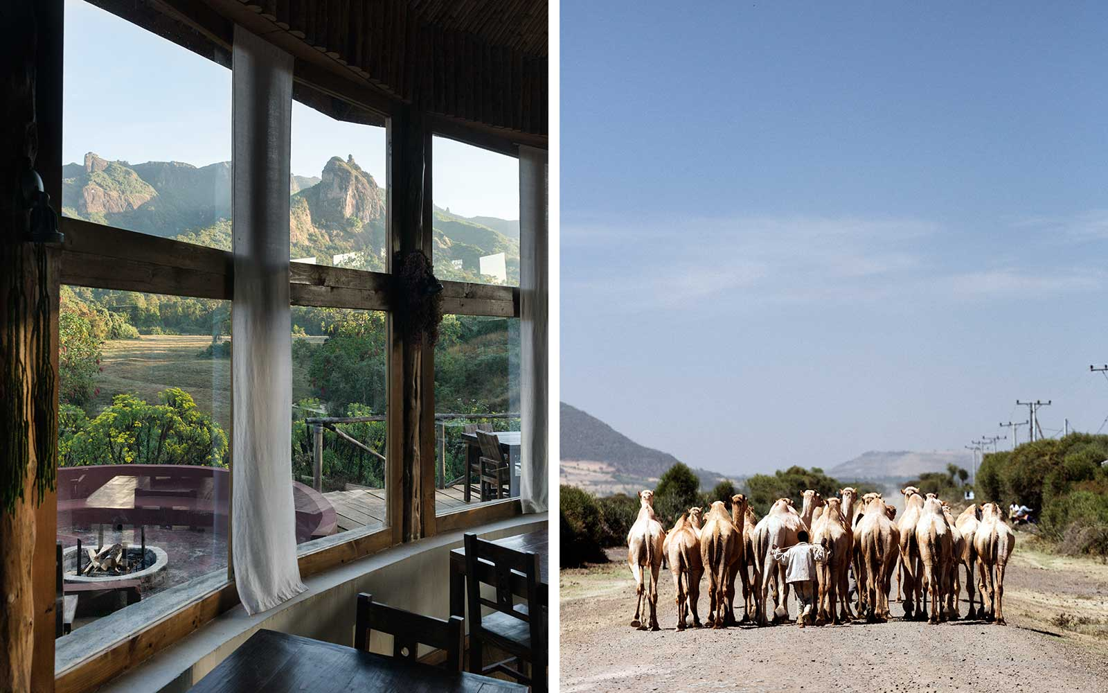 Ethiopia's Bale Mountain Lodge