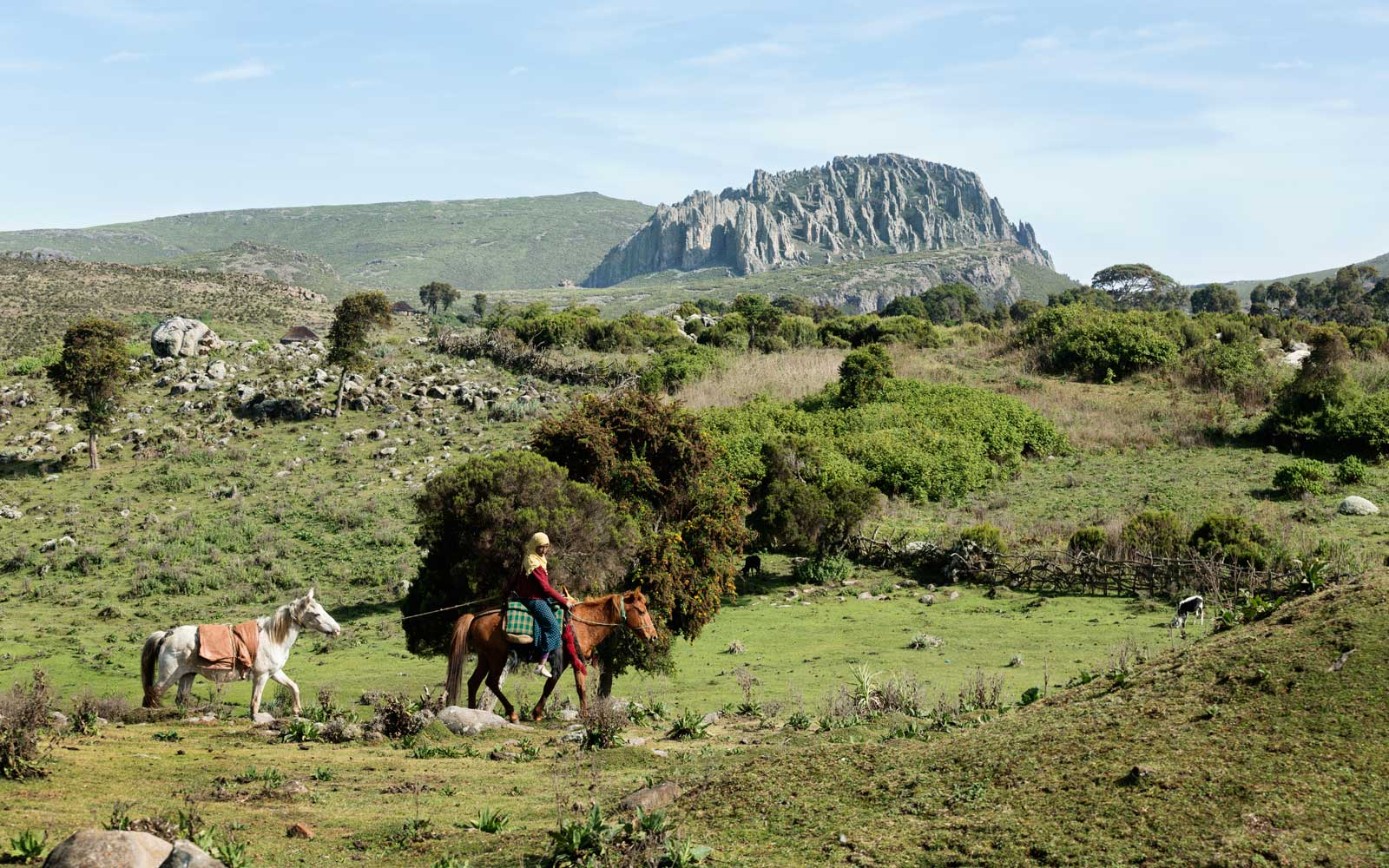 Bale Mountains, Ethiopia