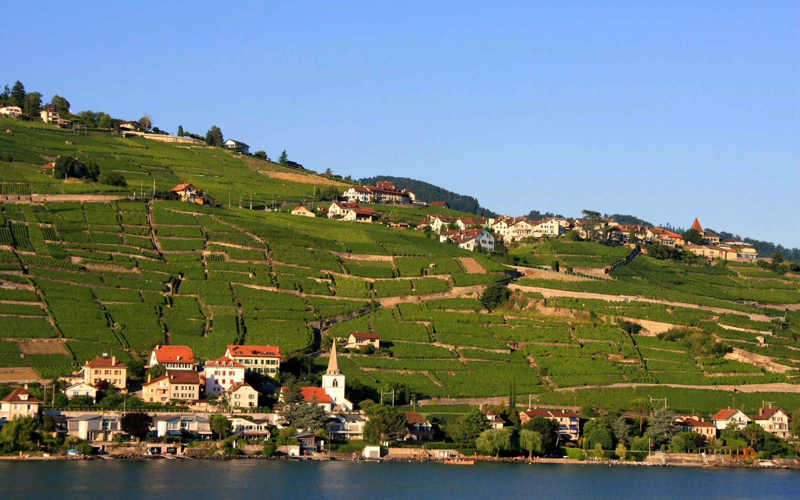 Hunt for Truffles in the Alps on This Six-day Tour of Switzerland