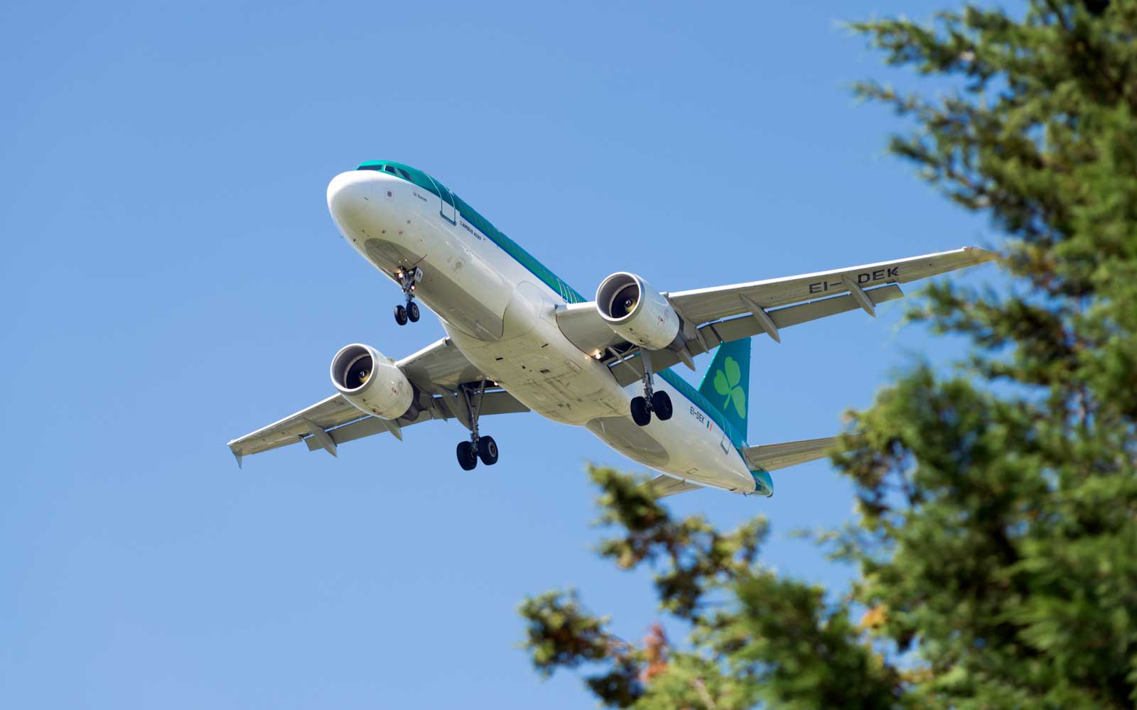 You Can Get Cheap Flights to Ireland With Aer Lingus's Latest Sale