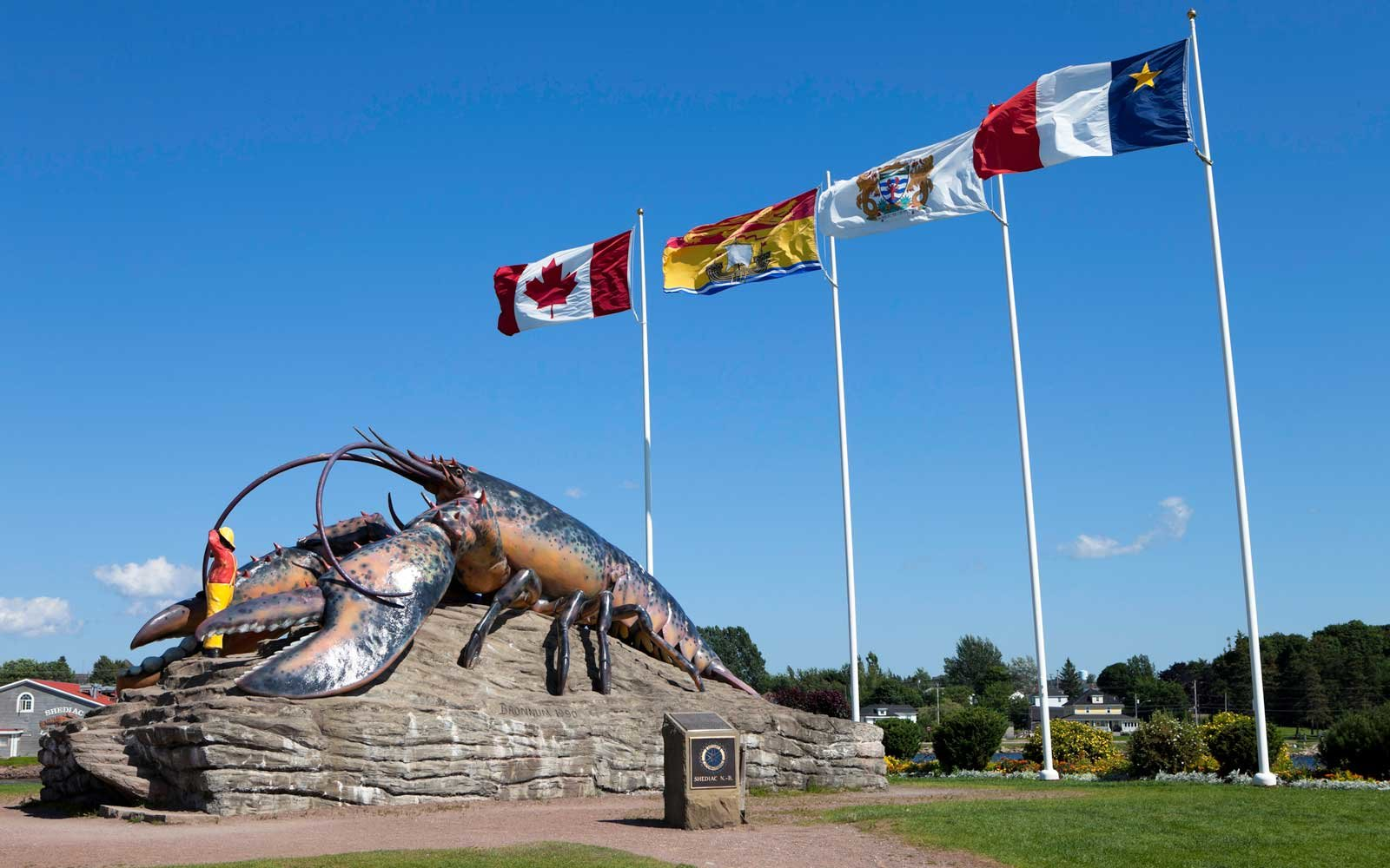 Largest Lobster Shediac