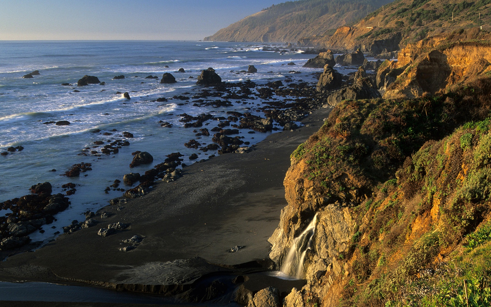 Westport-Union Landing State Beach, California