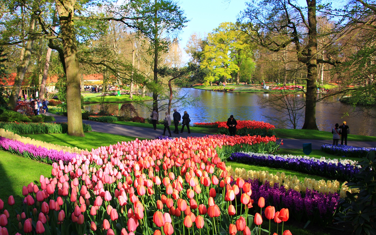 Spring 39 S 12 Best Spots For Flower Tourism Travel Leisure