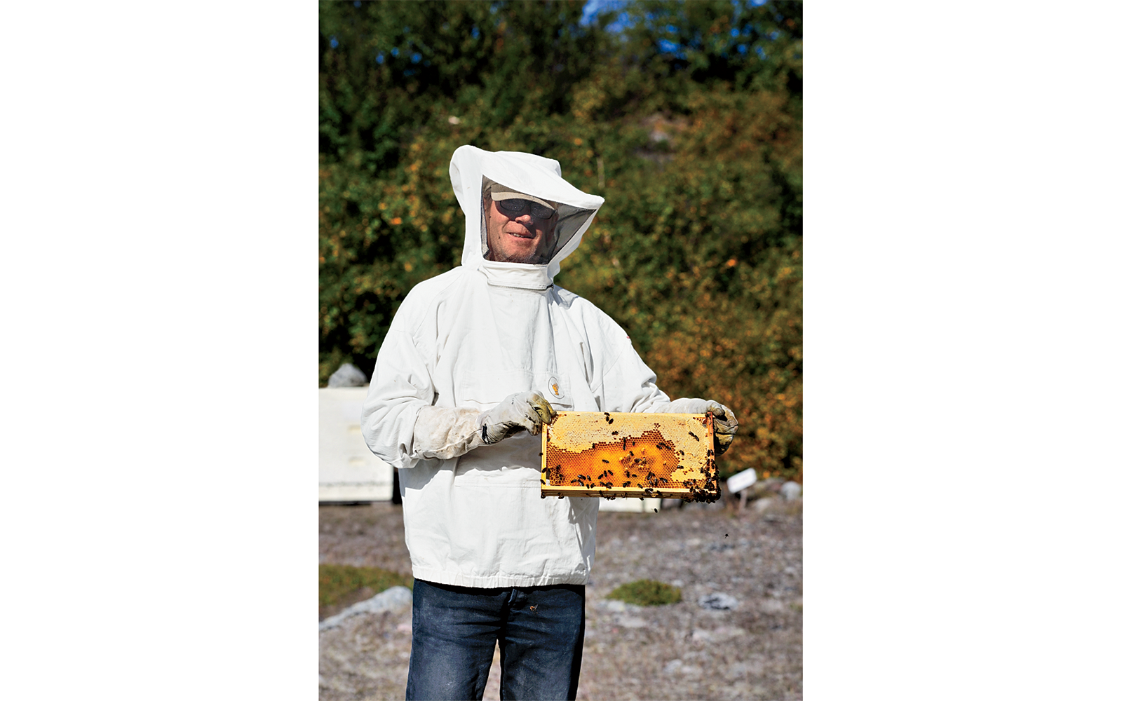 Ole Guldager, Beekeeper