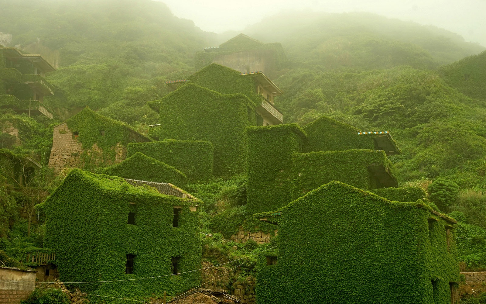 Hypnotic Images of a Chinese Ghost Town Completely Taken Over by Vegetation