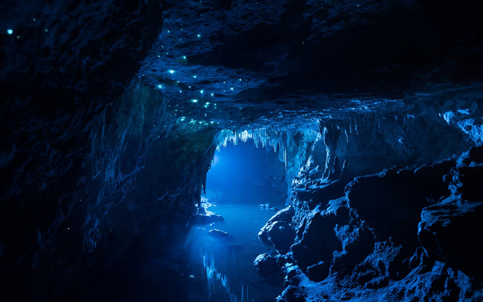 In Photos: New Zealand's Glow Worm-Covered Limestone Caves