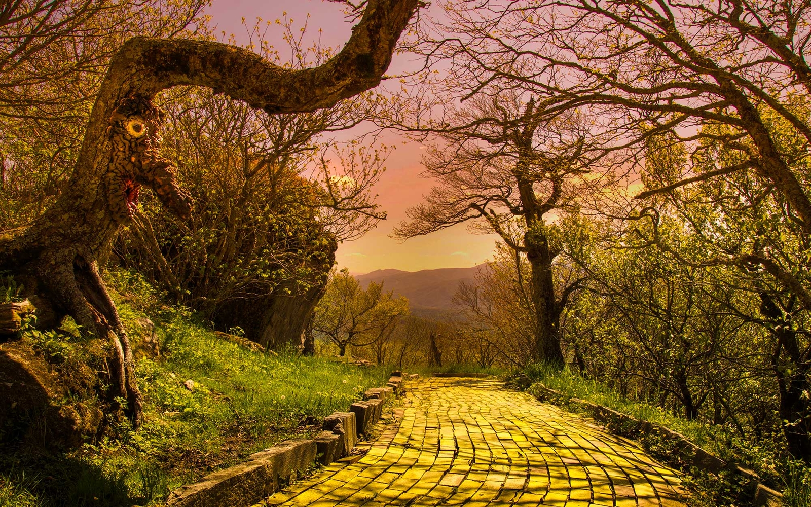 Follow The Yellow Brick Road To The Lost Land of Oz Amusement Park
