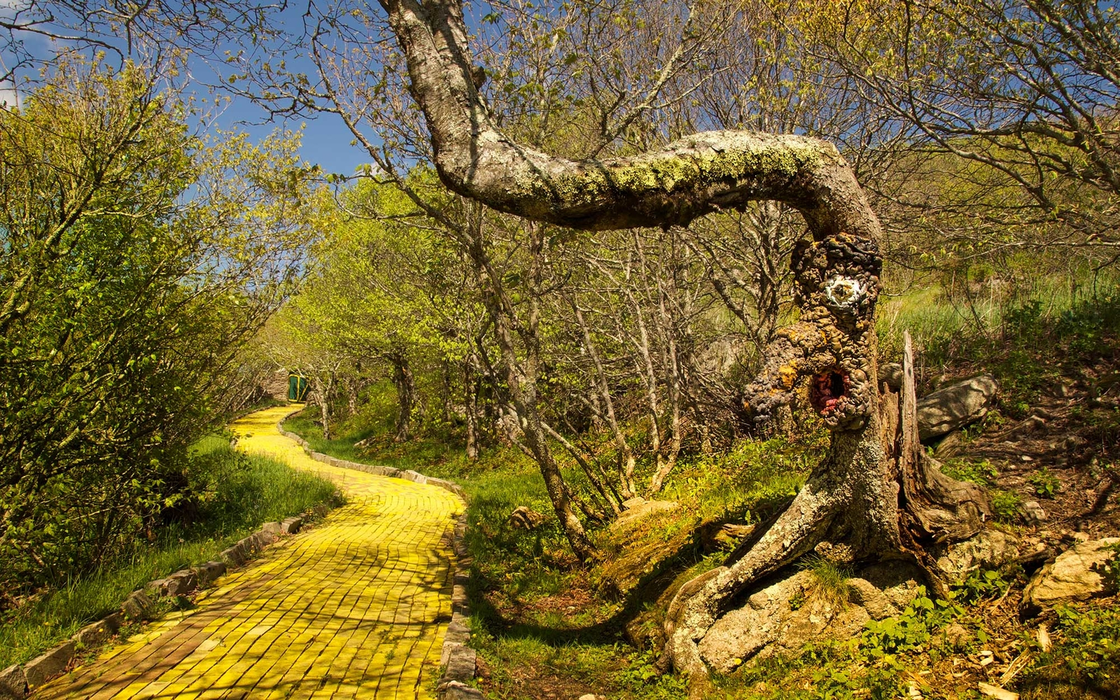 Follow The Yellow Brick Road To Lost Land Of Oz Amut Park