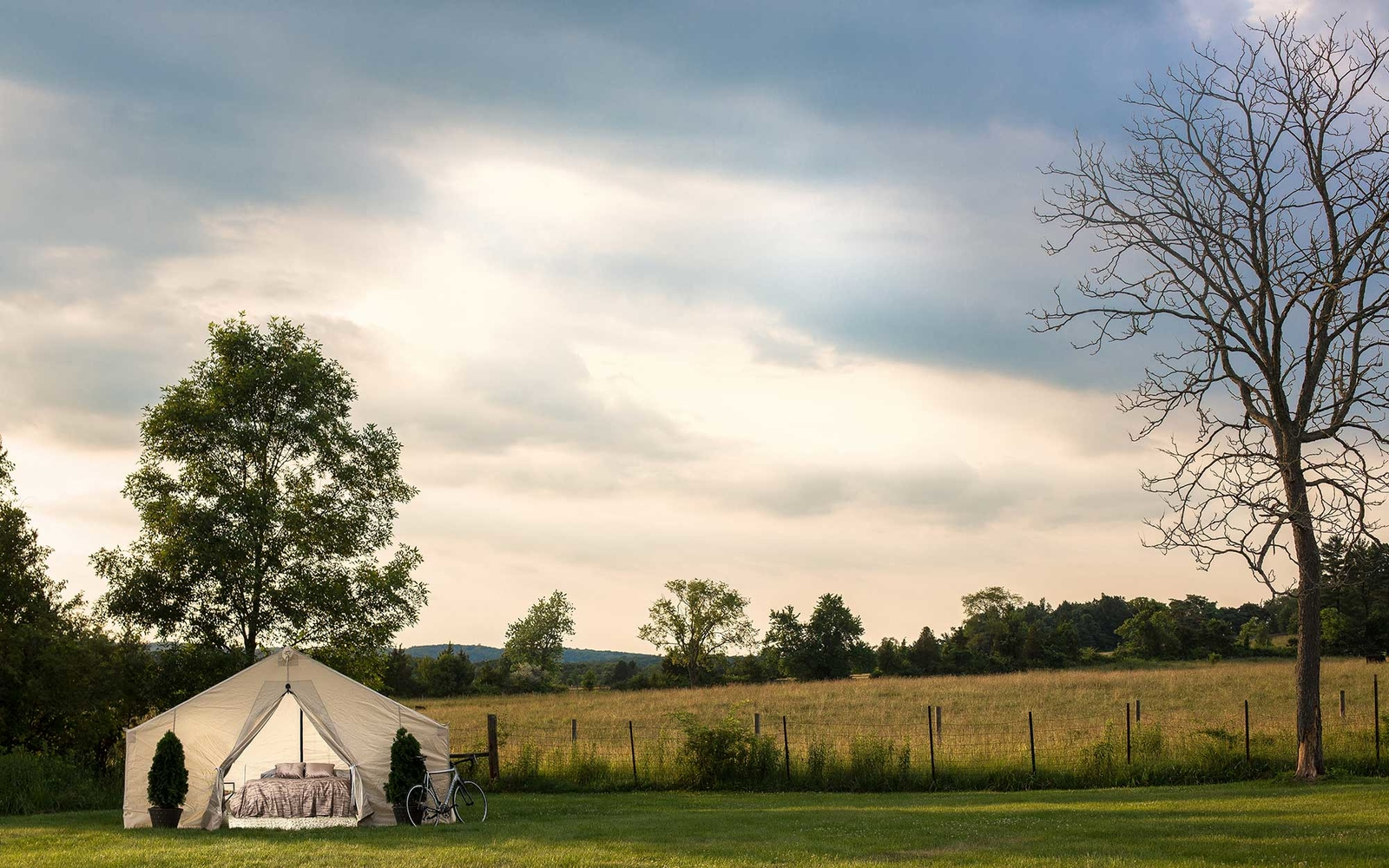 Wine Harvest Glamping: The Napa Activity You Must Try