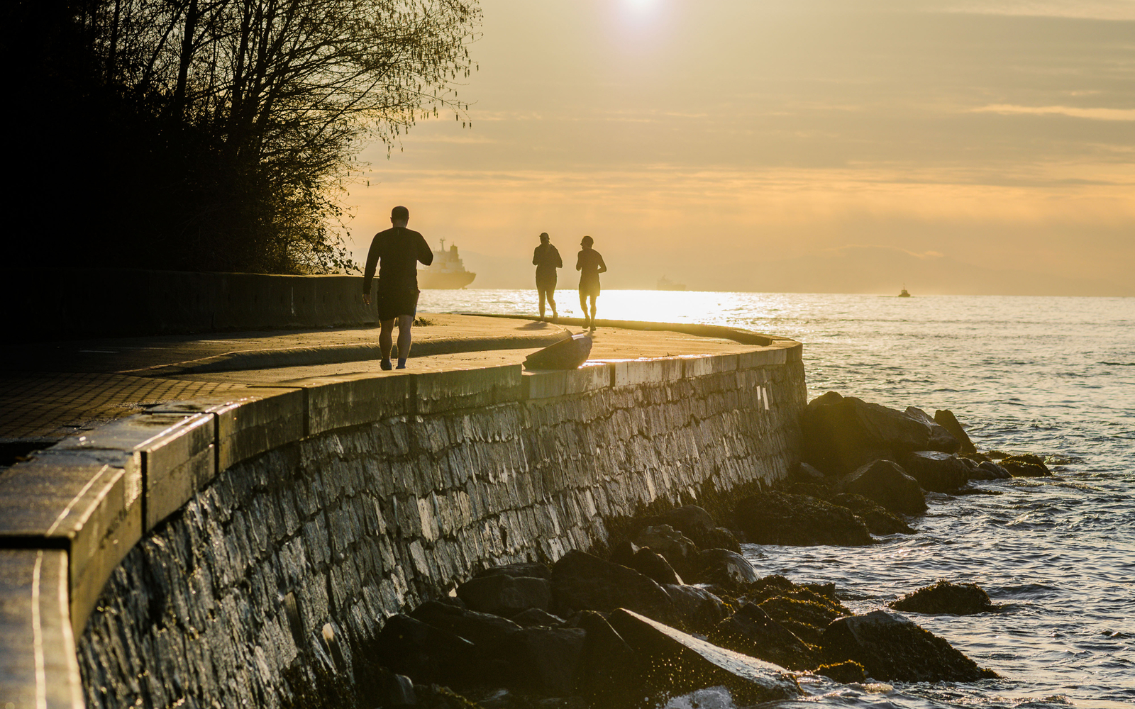The Seawall Path in Vancouver