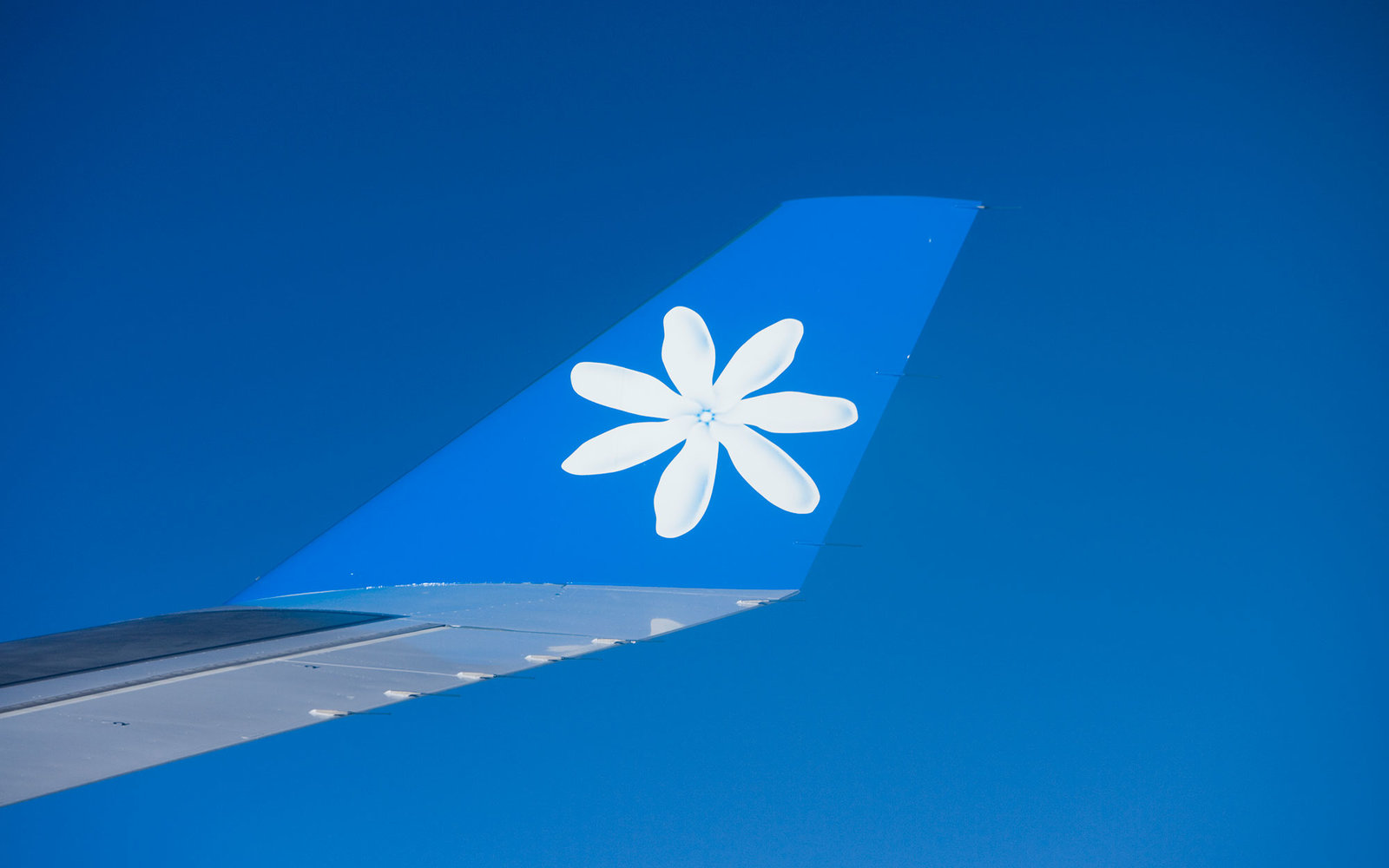 Air Tahiti Nui Airbus A340 wing with Tiare logo