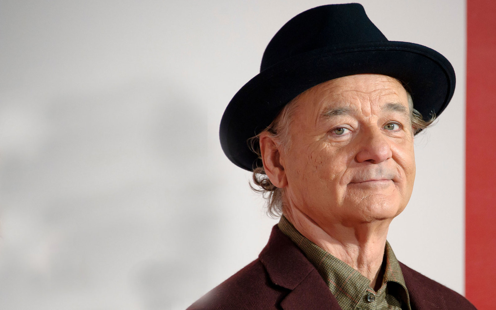Bill Murray — Latest News, Images and Photos — CrypticImages