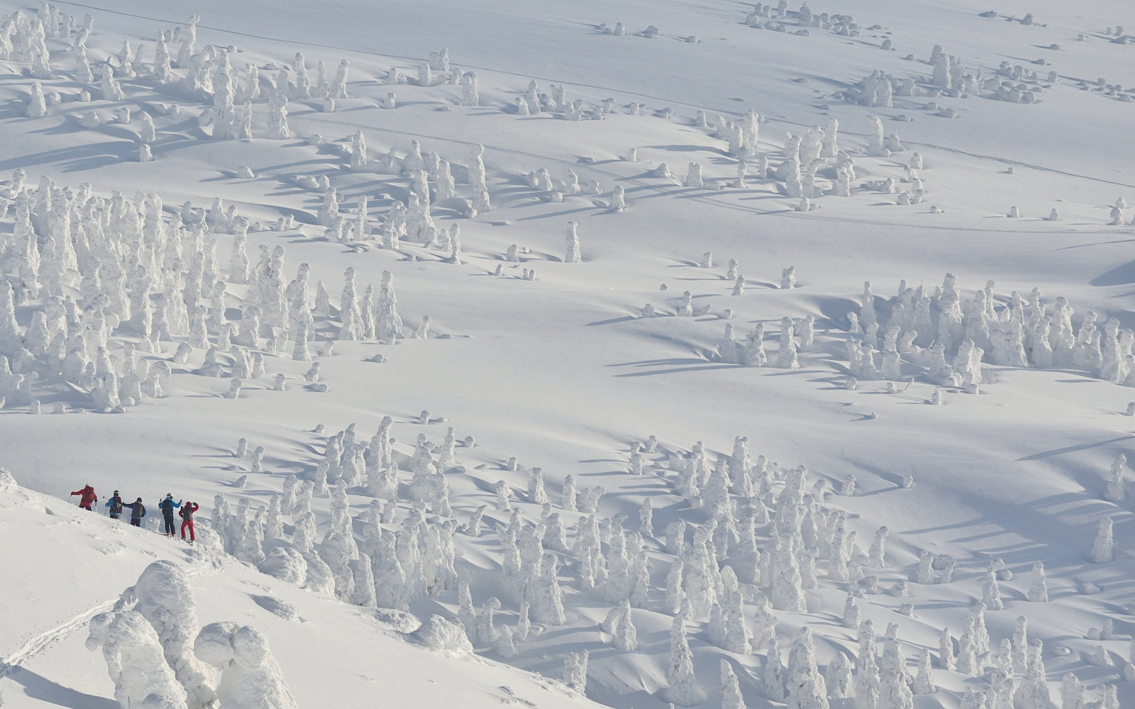 These walkers brave freezing conditions and trek across a snowy mountain - and look like they are joined by thousands of snowmen. The stunning shots show hikers making their way through heavy snow in a 5000ft high mountain range in below freezing temper
