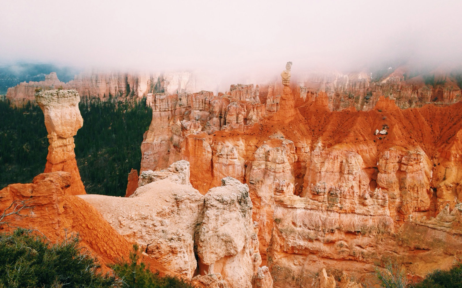 Richelle Szypulski in Bryce Canyon National Park