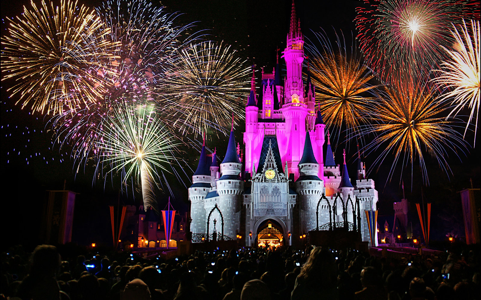 You can now get married at Magic Kingdom at night