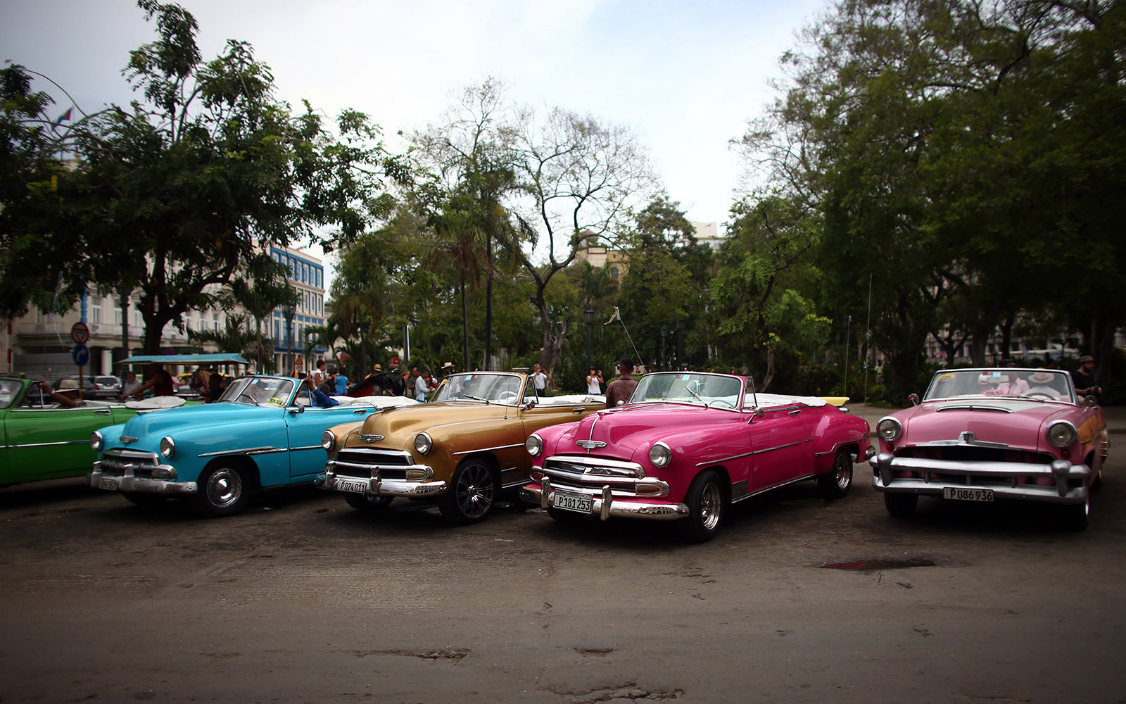 HAVANA, CUBA - SEPTEMBER 16:  Vintage American cars being used as tourist taxis are parked alongside each other as drivers wait for customers on September 16, 2015 in Havana, Cuba.  Pope Francis is due to make a three day visit to Cuba from September 19 w