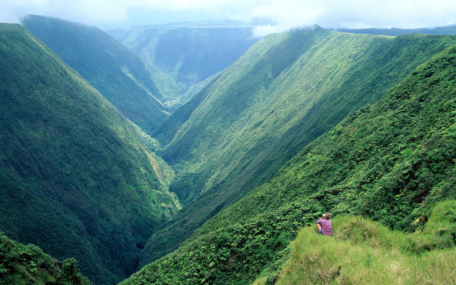 Hawaii, BigIsle, Waipio Valley hiker enjoying back side view into valley