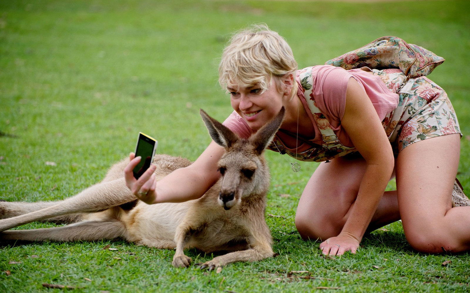We're Begging You: Stop Taking Selfies With Wild Animals