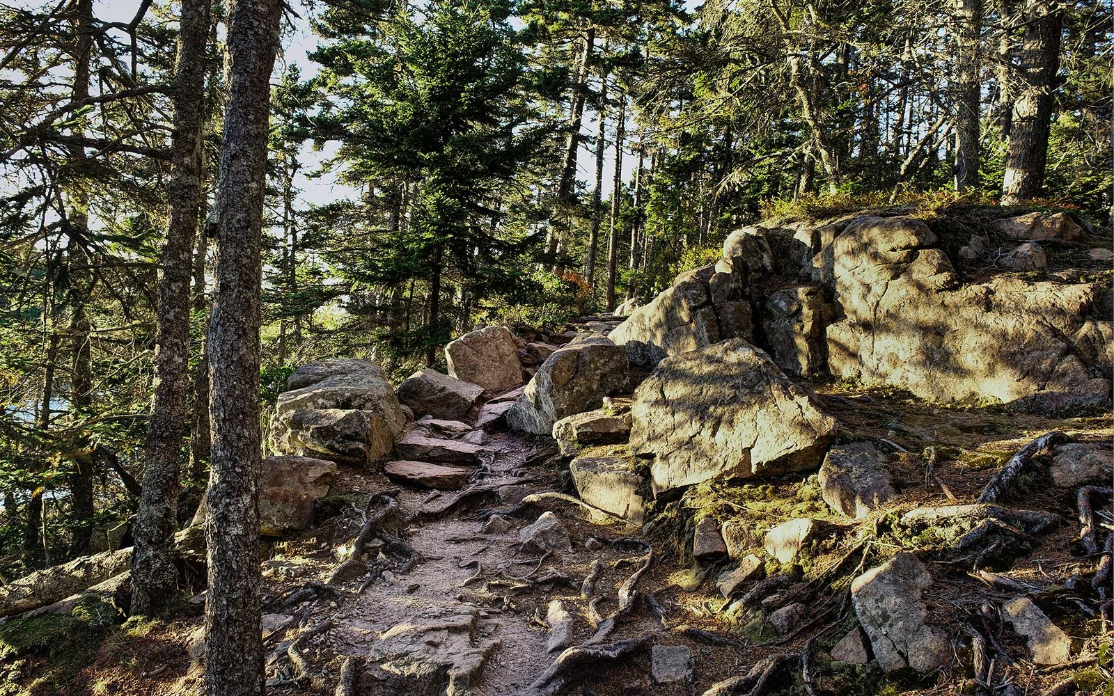 Personal History: Acadia National Park | Travel + Leisure