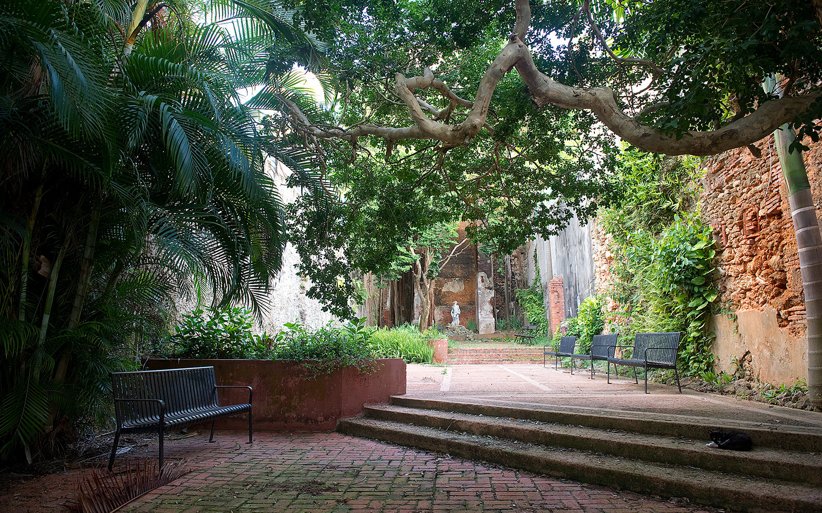 SAN JUAN, PUERTO RICO - JUNE 06:  A small classical garden between colonial buildings in Old San Juan (viejo San Juan) on June 6, 2012 in San Juan, Puerto Rico. (Photo by Alfredo Sosa/The Christian Science Monitor via Getty Images)