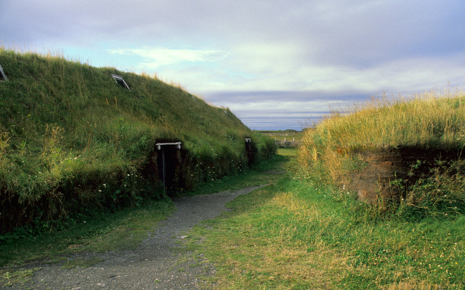L'anse Aux Meadows Viking Village Newfoundland