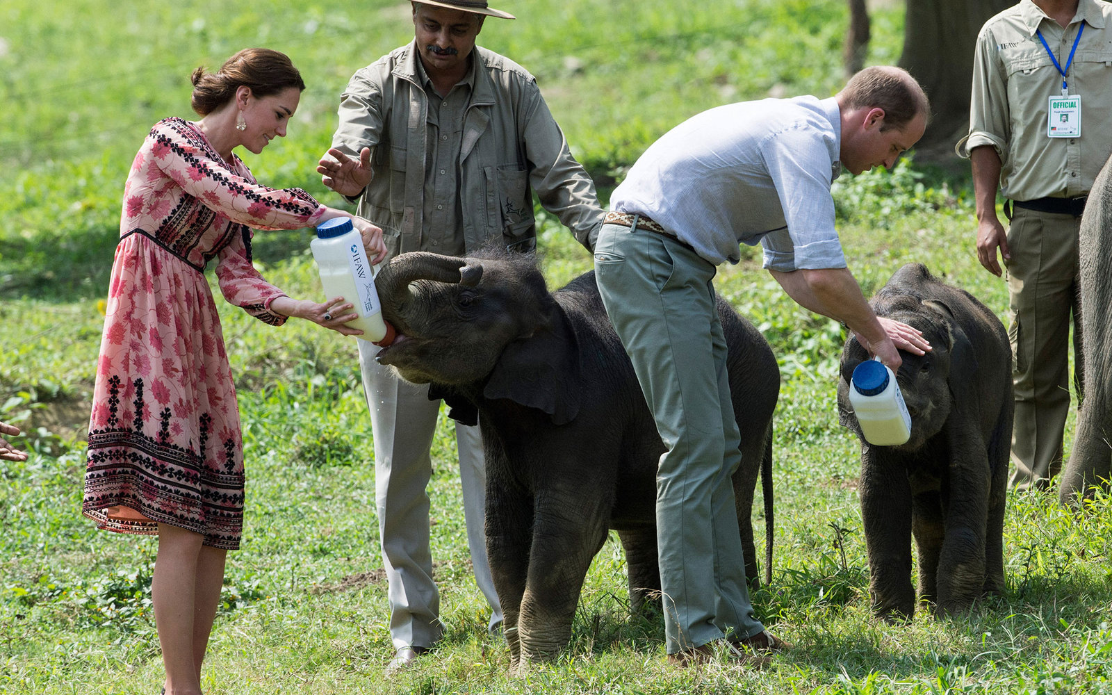 KAZIRANGA, INDIA - APRIL 13:  Catherine, Duchess of Cambridge and Prince William, Duke of Cambridge feed baby elephants during a visit to the Centre for Wildlife Rehabilitation and Conservation, at Kaziranga National Park on April 13, 2016 in Guwahati, In