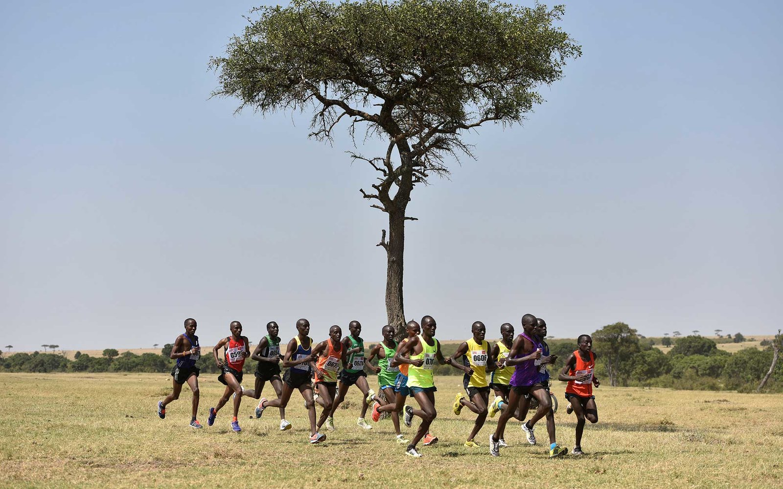 F9243D (151213) -- MASAI MARA, Dec. 13, 2015 (Xinhua) -- Athletes compete during the 7th Masai Mara Marathon on the Masai Mara savanna in Kenya, on Aug. 15, 2015. As a country Kenya has considerable land area devoted to wildlife habitats. The tropical wet