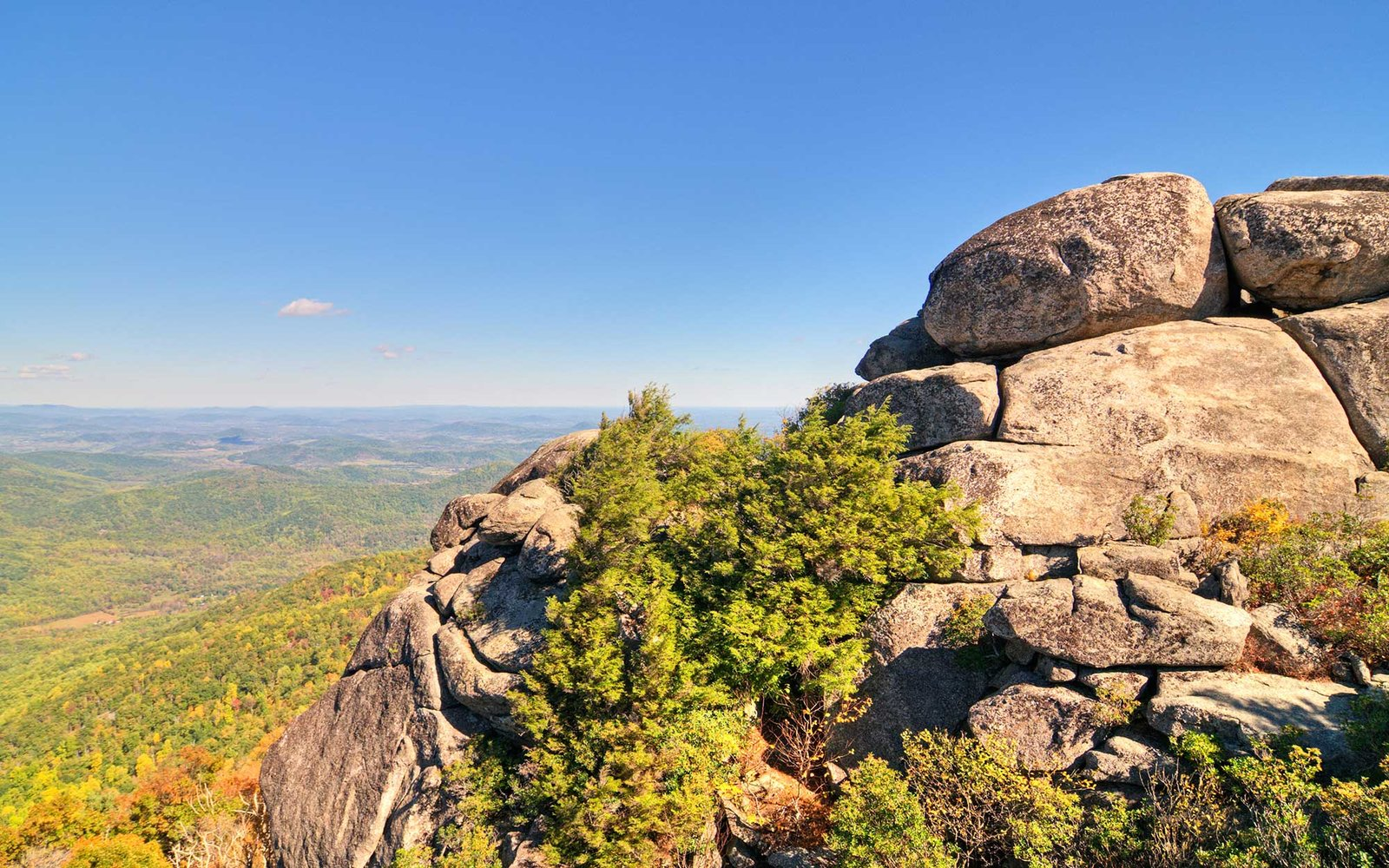 Spring has sprung! Here are the best hikes near Washington, DC: