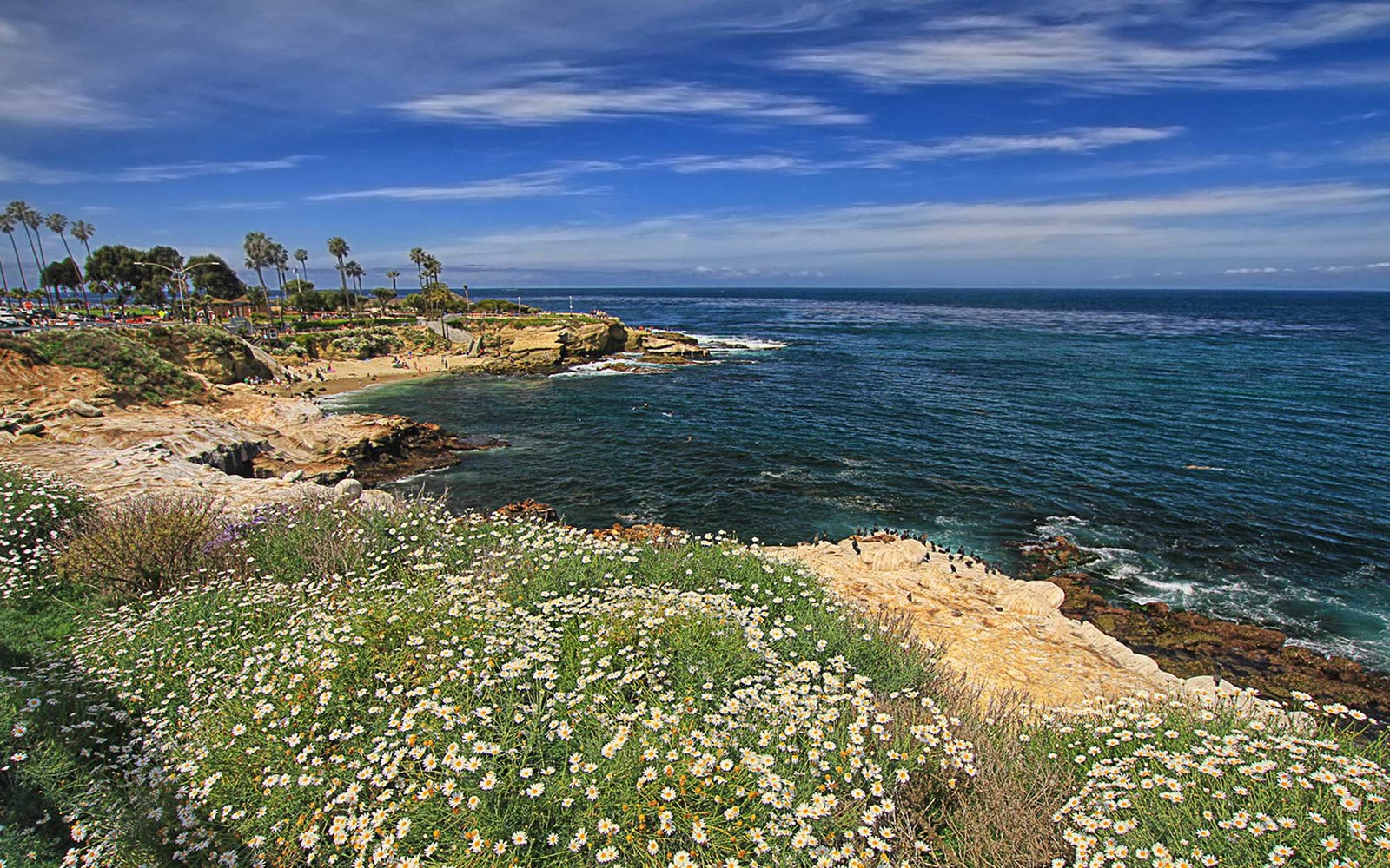 La Jolla Cove in California