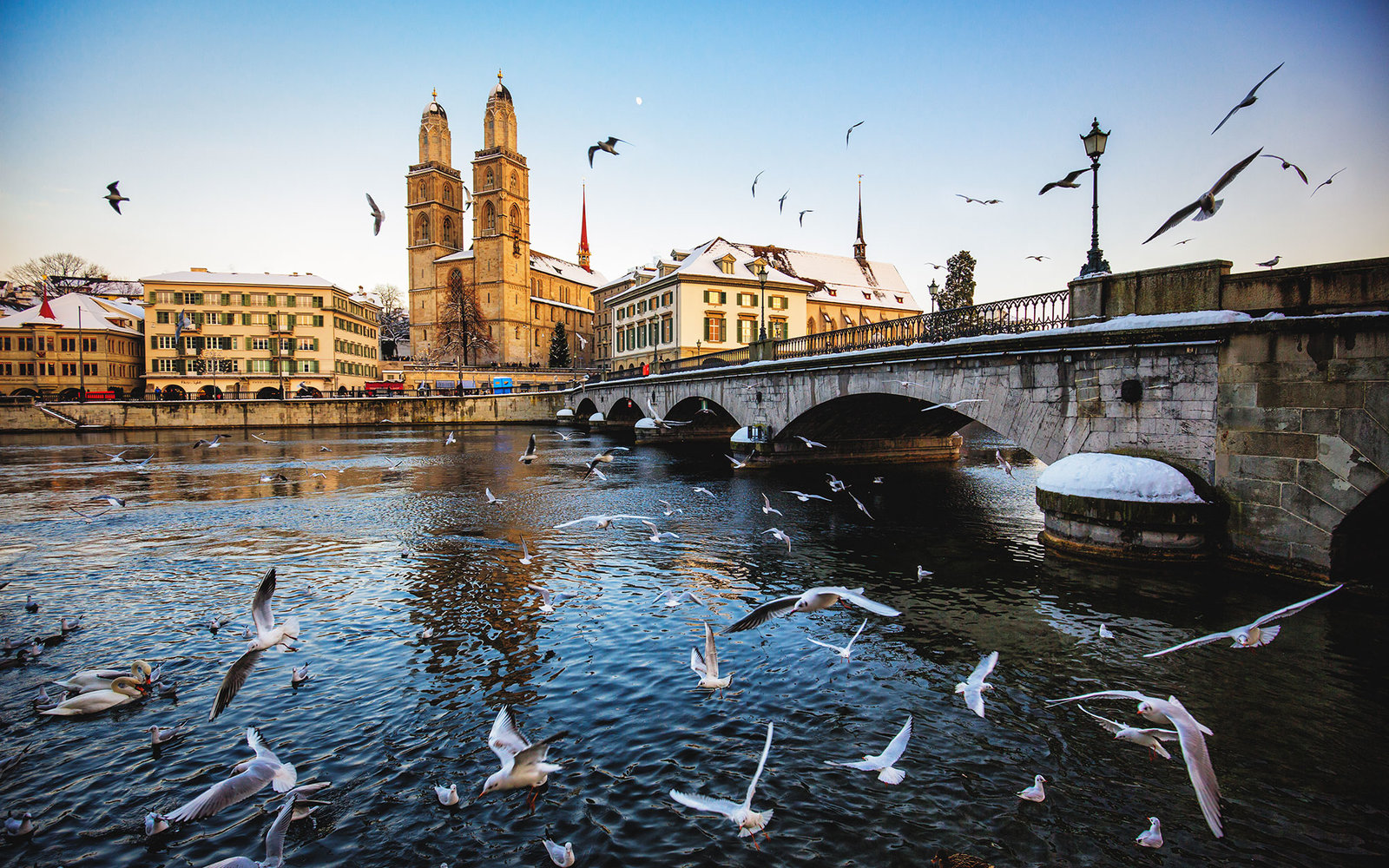 Zurich Grossmunster in Winter with Birds flying.