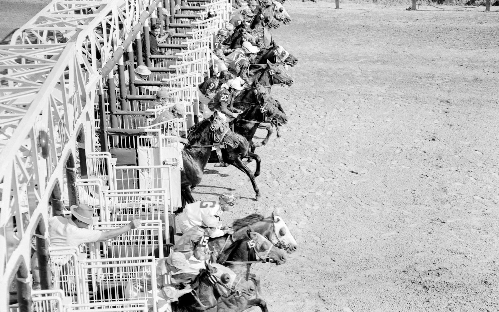 Starting Gate of the Kentucky Derby, 1956