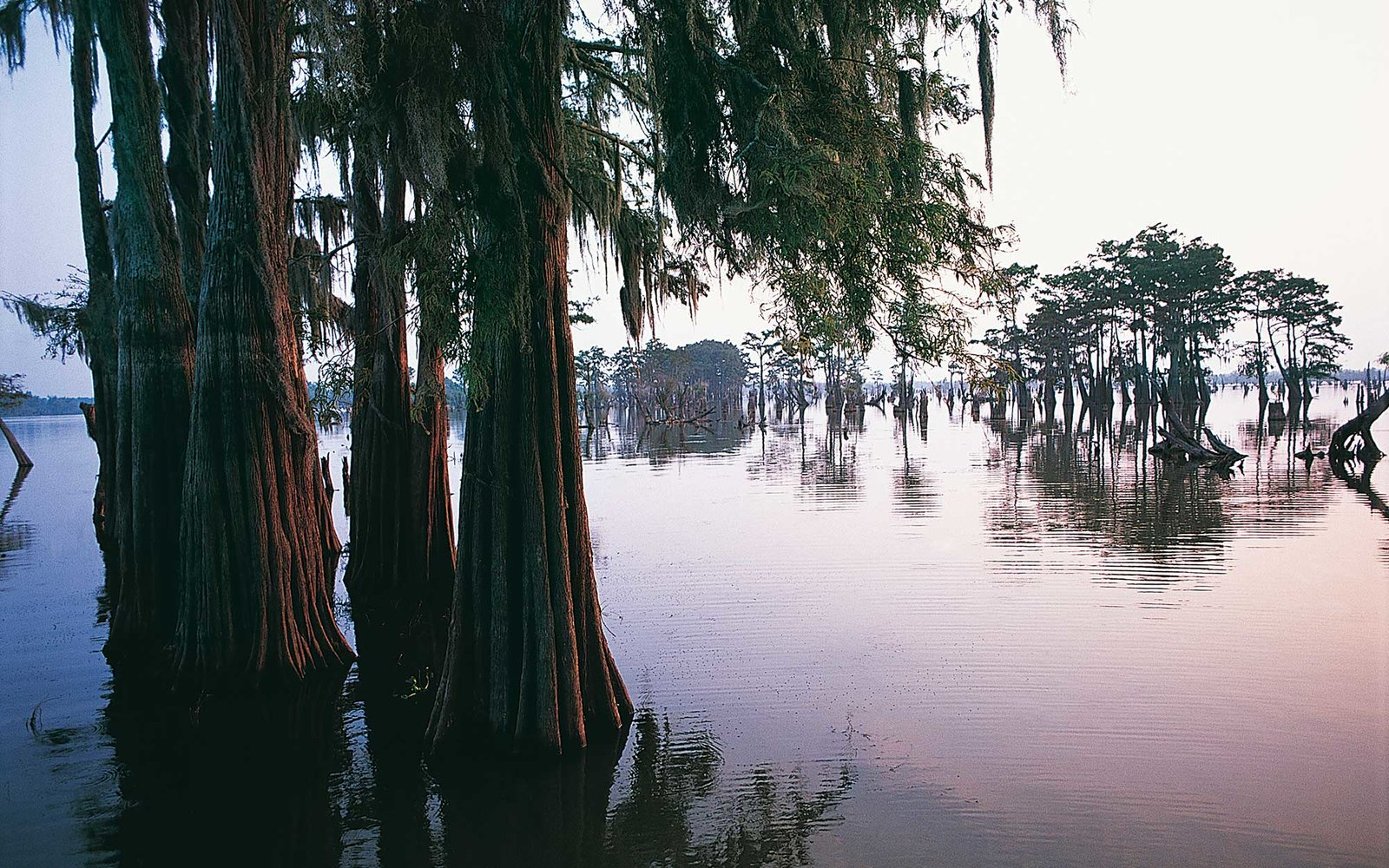 Atchafalaya, Louisiana