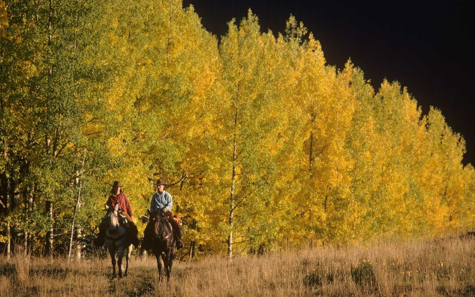 Horseback riding on a dude ranch in Colorado