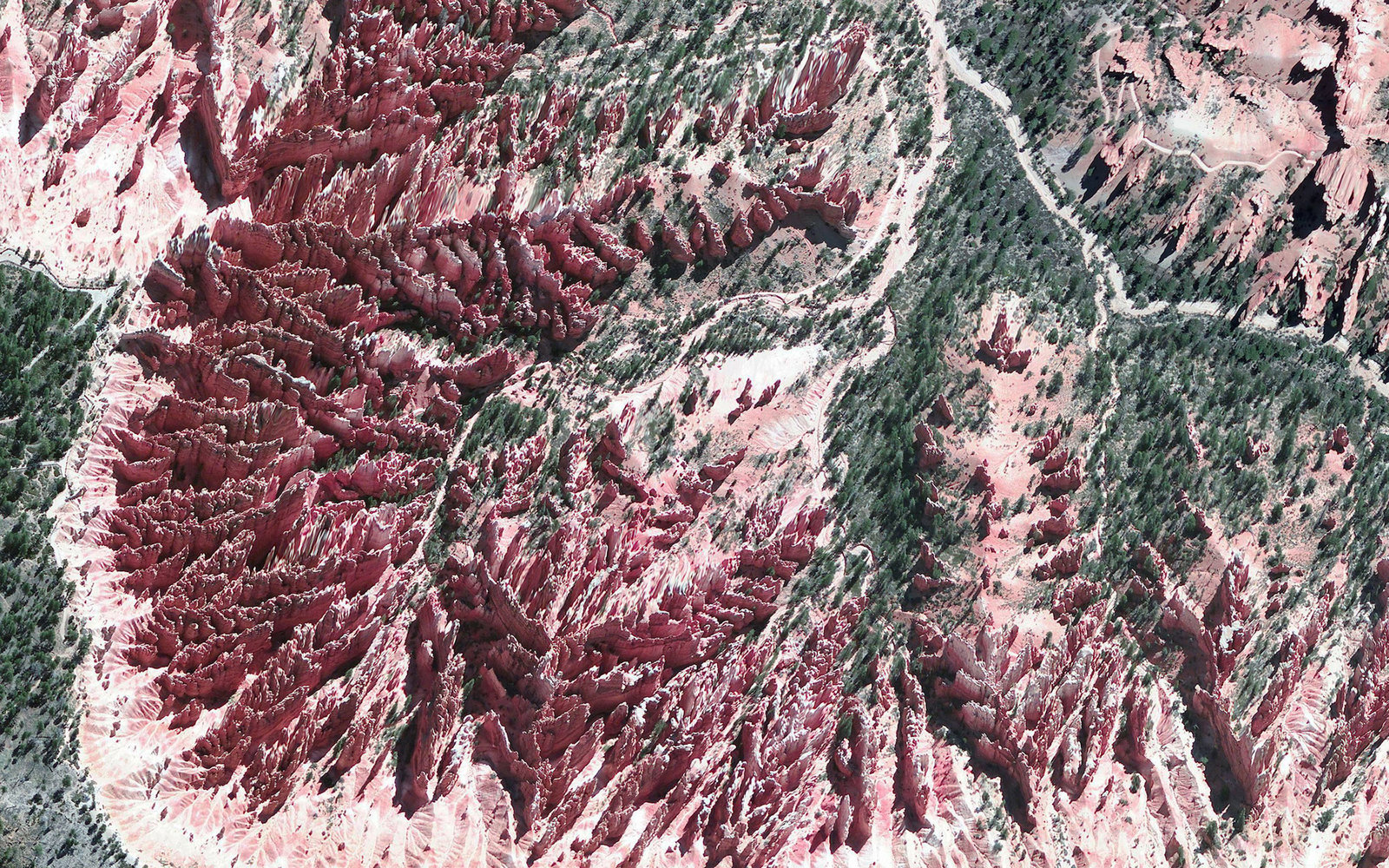 Daily Overview: National Parks Round up