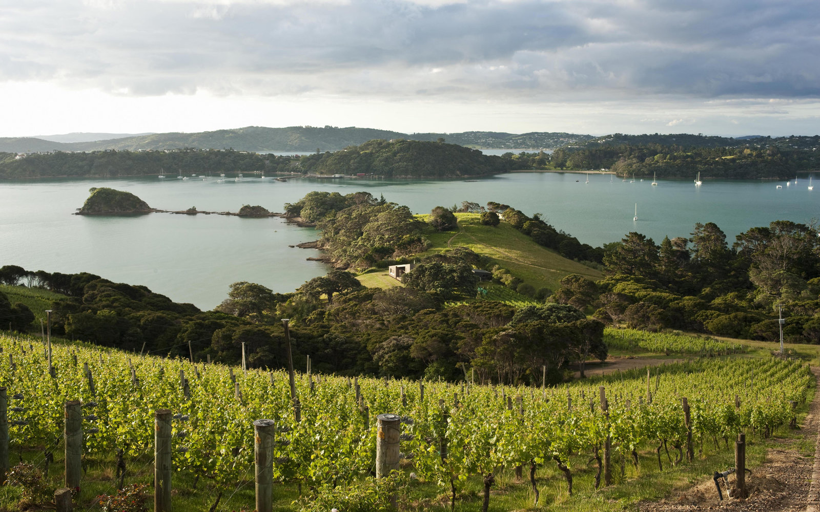 No. 4: Waiheke Island, New Zealand