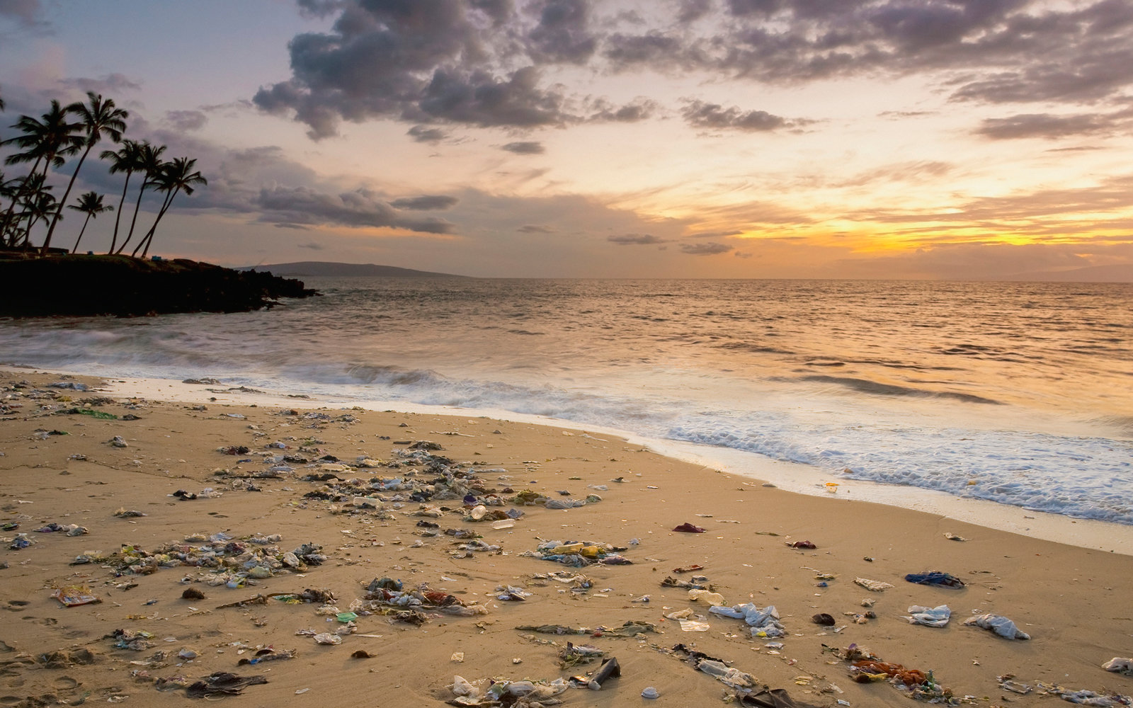 Trash Increases On Hawaii Beaches