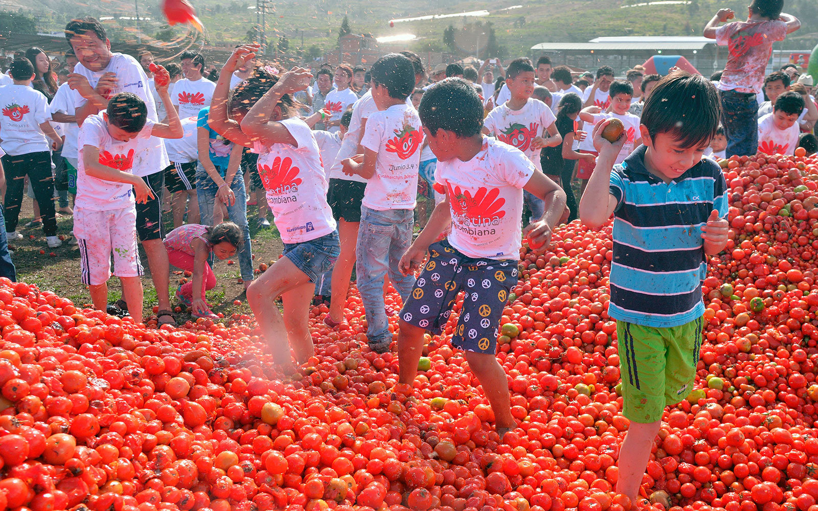 Juicy Photos From Bogot 225 S Tomato Throwing Festival