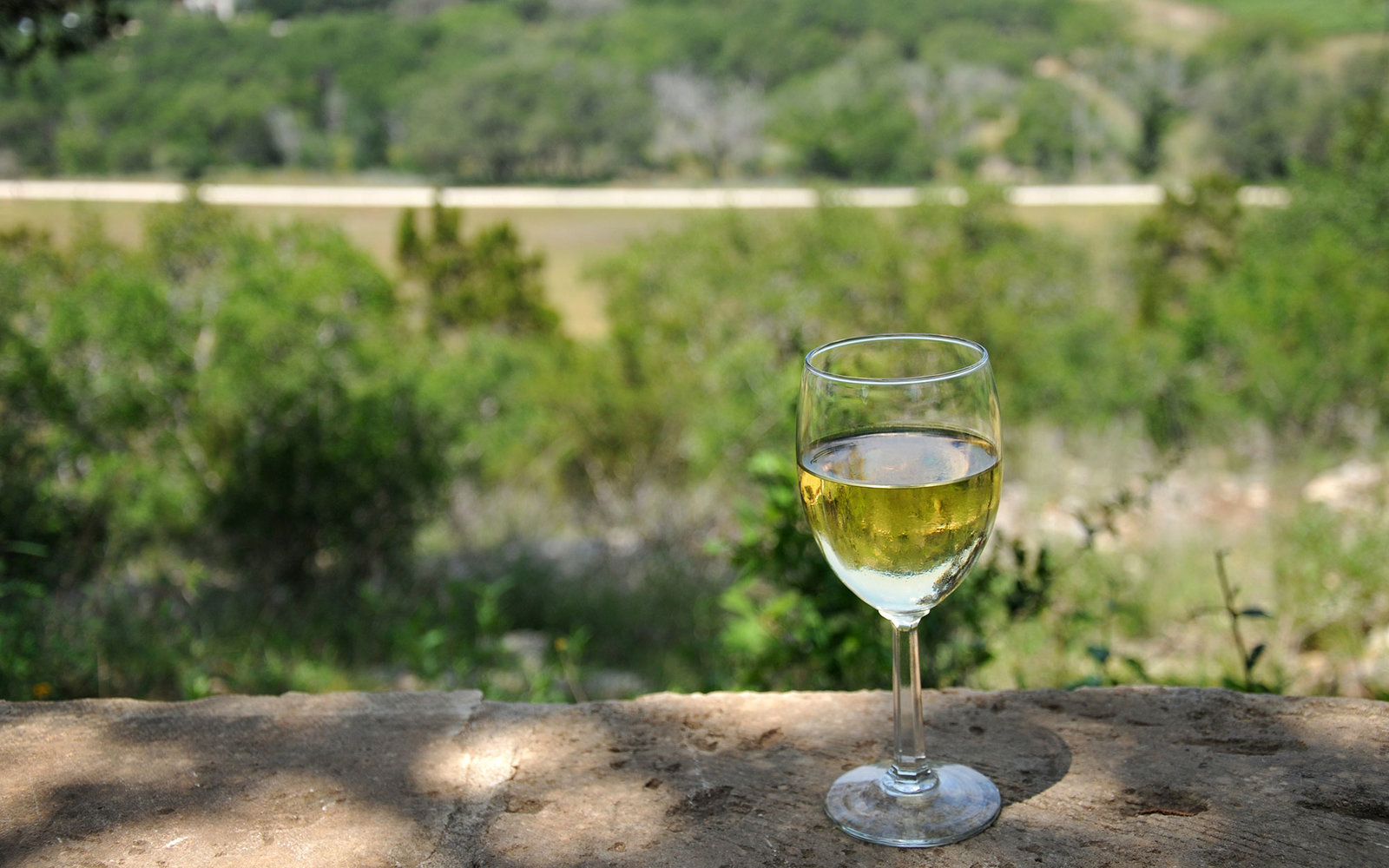 Glass of white line overlooking the scenic hill country