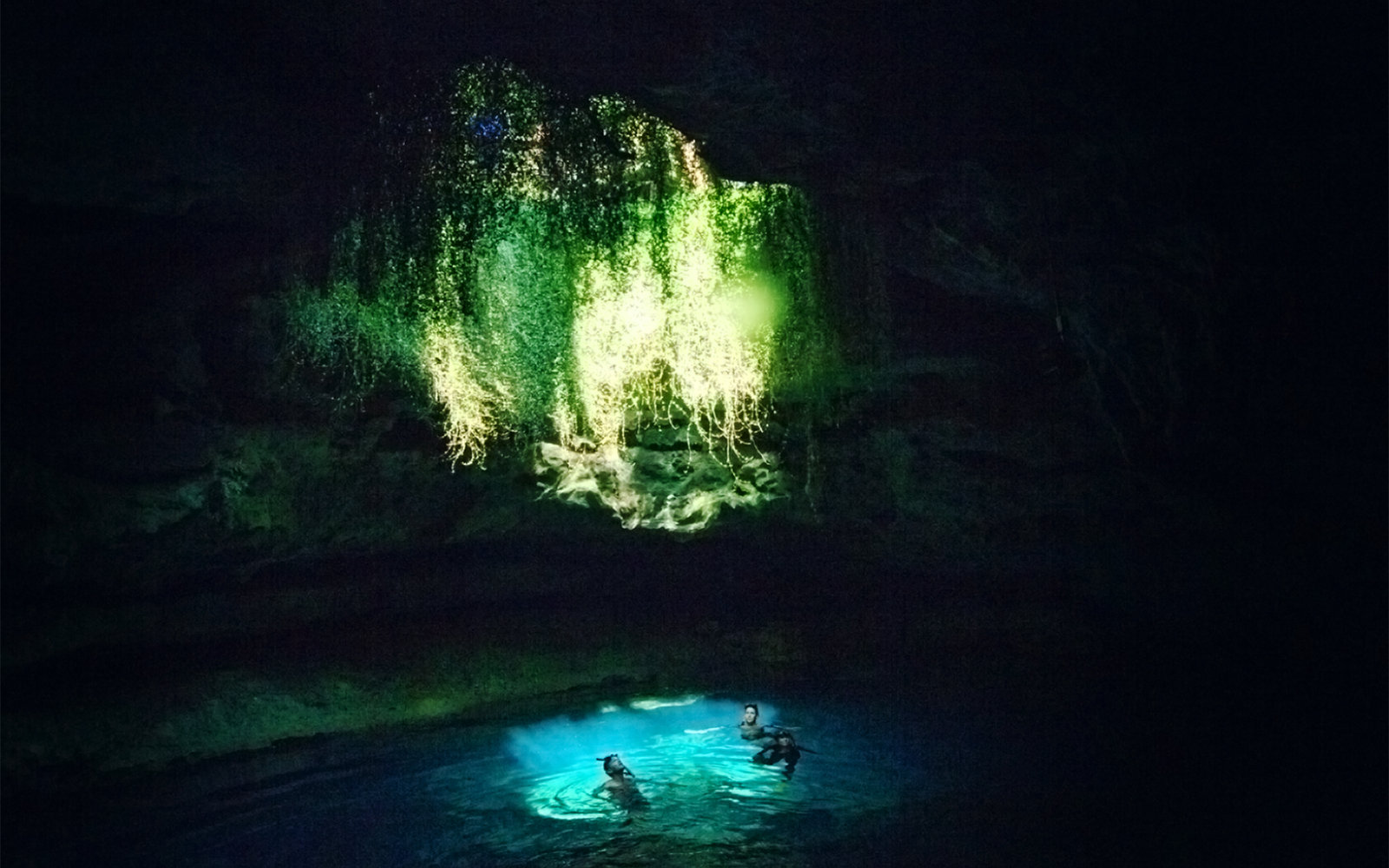 Devil's Den Spring in Williston, Florida