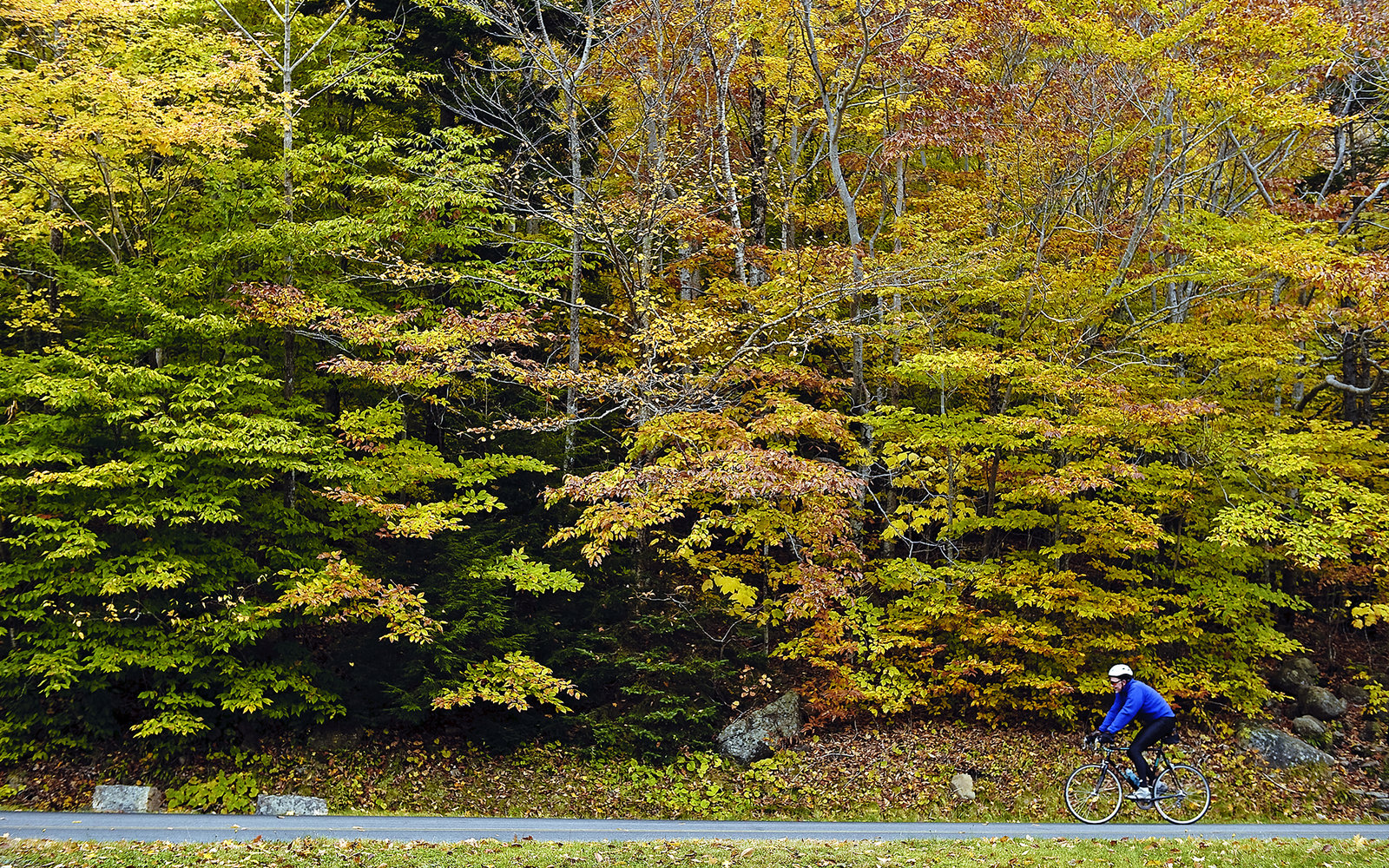 The 12 Best Places to See Fall Foliage in Maine