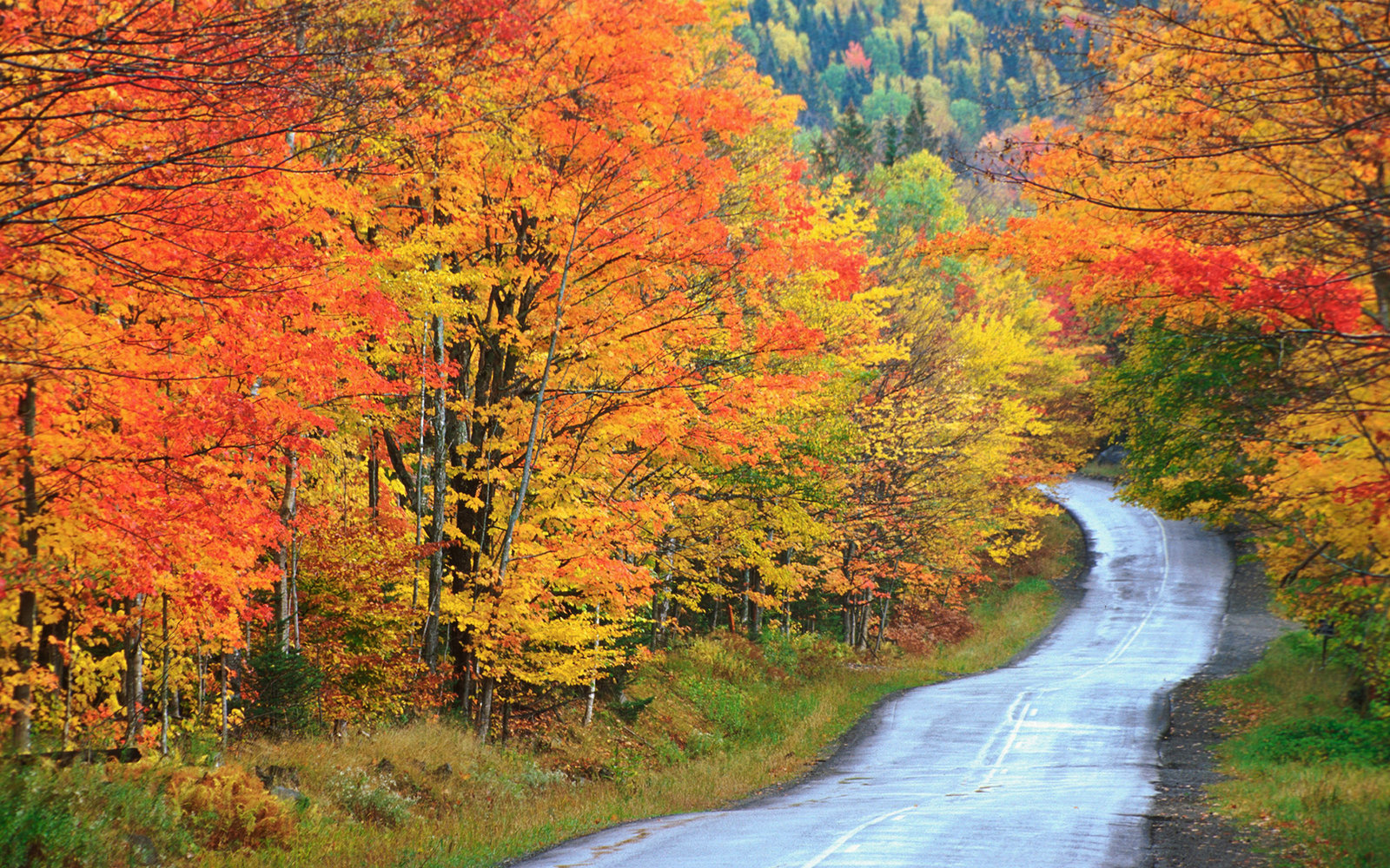 Beautiful Maine Fall Foliage Locations Travel Leisure - 8 best places in the us to watch fall foliage