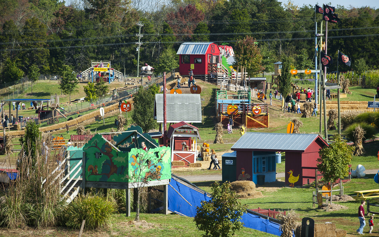 Cox Farms Pumpkin Farm in Centreville, Virginia