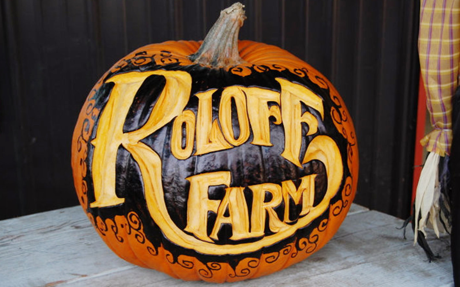 Roloff Farms Pumpkin Farm