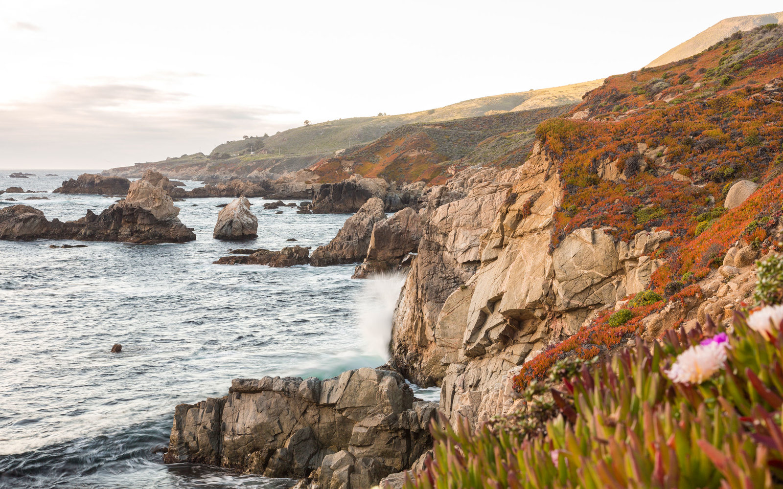 Image result for Sur California: Road Trip Tips For First Timers