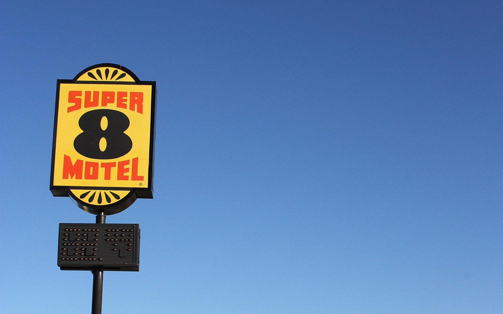 Super 8 Motel Spider